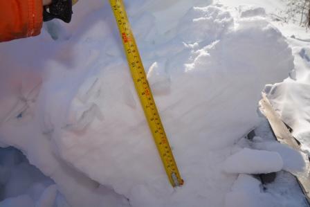 Quantité de neige